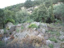 aspiotades6