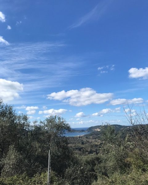 Land 827,30m in Aspiotades