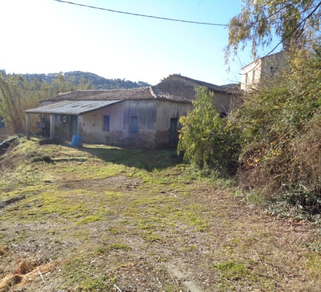 Olive Oil Factory building area 270sq.m. on a 2100sq.m. plot. in Magoulades